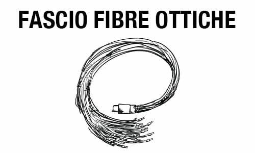 Fascio a fibre ottiche